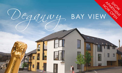 Bluebay Homes leaflet design