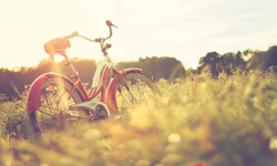 Bike in field landscape photography
